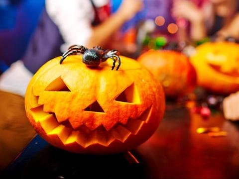 Qua bi ngo rong khac hinh khuon mat trong le Halloween co ten la gi? hinh anh
