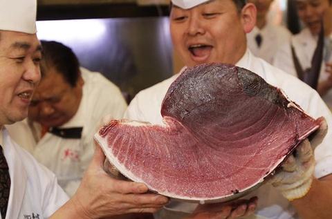 Vi sao ca ngu Viet Nam khong the lam sushi? hinh anh