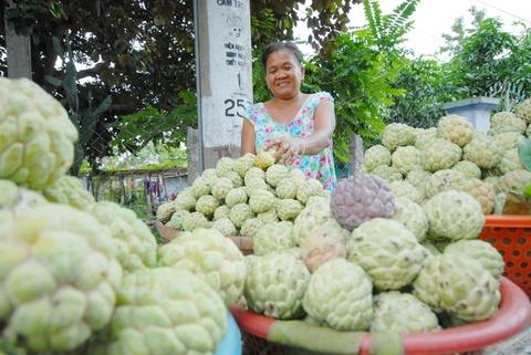 Nguoi dan Khmer mien Tay thu loi tu mang cau trong tren nui hinh anh