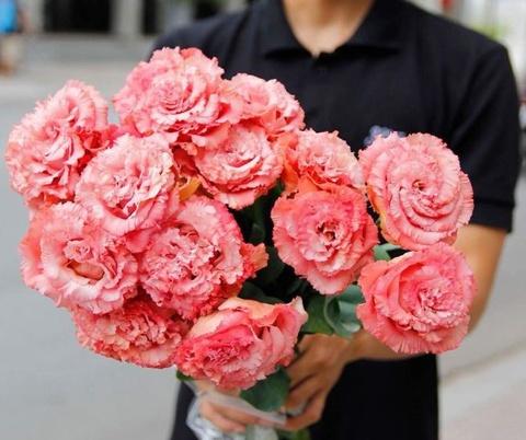 le hoi hoa nhat ban hinh anh