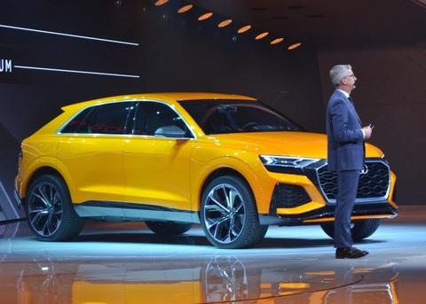 Audi Q8 Sport Concept - doi thu BMW X6M ra mat hinh anh