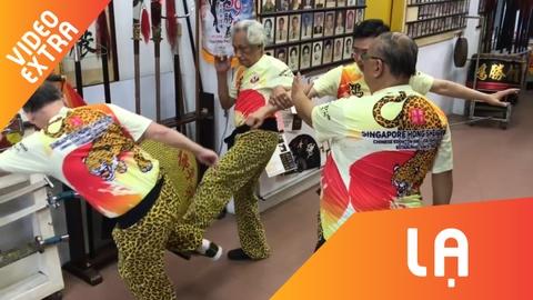 Bai vo Thai Ly Phat dung manh cua vo su Singapore 81 tuoi hinh anh