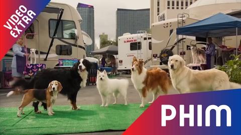 Biet doi cun cung xuat hien trong trailer phim 'Show dogs' hinh anh
