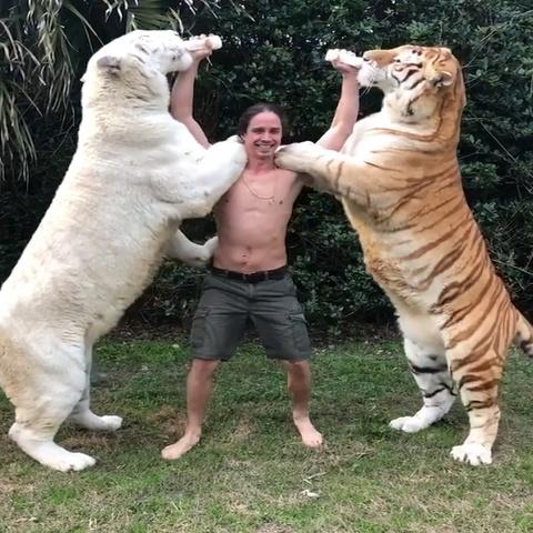 Chang 'Tarzan doi thuc' cho 2 chu ho bu binh cung luc hinh anh