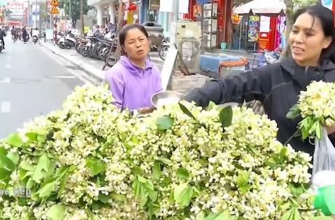 Ganh hang rong ban hoa buoi thu 6 trieu dong/ngay hinh anh