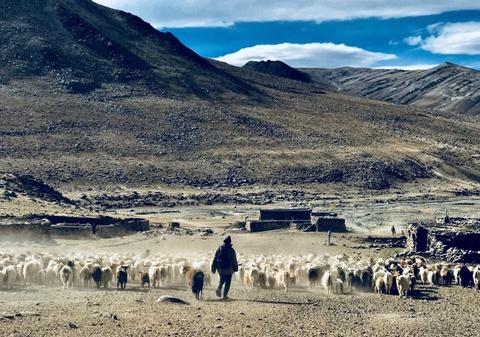 Duong den Ladakh - hanh trinh danh cho nhung doi chan khong biet moi hinh anh 13