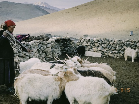 Duong den Ladakh - hanh trinh danh cho nhung doi chan khong biet moi hinh anh 38