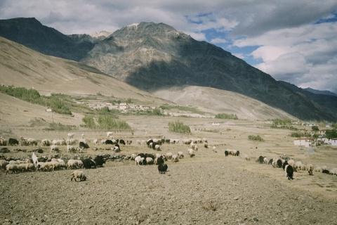Duong den Ladakh - hanh trinh danh cho nhung doi chan khong biet moi hinh anh 24