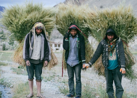 Duong den Ladakh - hanh trinh danh cho nhung doi chan khong biet moi hinh anh 48