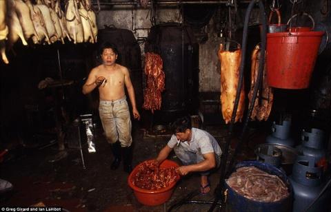 Cuu Long Trai Thanh: Trung tam toi pham cua Hong Kong hinh anh 5