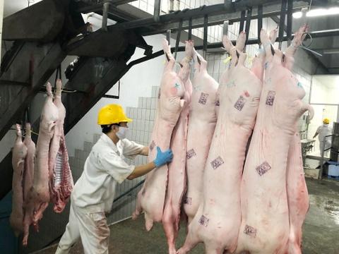 Người Sài Gòn vẫn mua thịt heo bất chấp dịch tả heo châu Phi