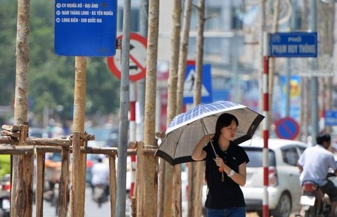 Thu tuong: 'Thong tin lai day du ve de an thay the cay xanh' hinh anh