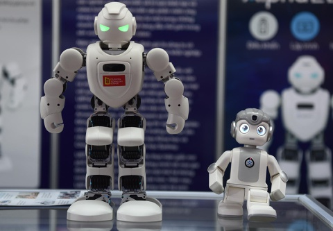 Robot la, do gom su hang chuc trieu gay chu y tai Ha Noi hinh anh 2