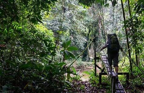 Hang Nai: Bai hoc du lich xanh tu Malaysia hinh anh
