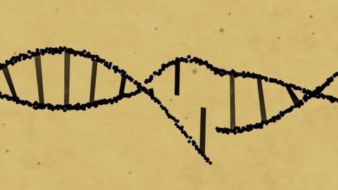 Dot pha lon: Cac nha khoa hoc chinh sua duoc gen trong phoi thai hinh anh 5