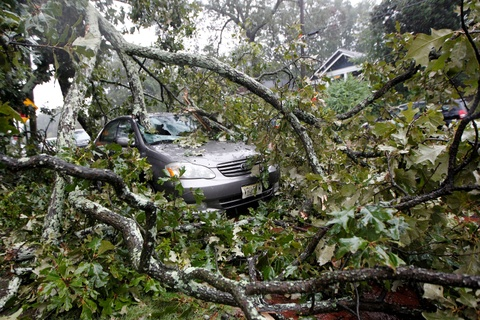 Florida tan hoang sau khi 'quai vat' Irma di qua hinh anh 3