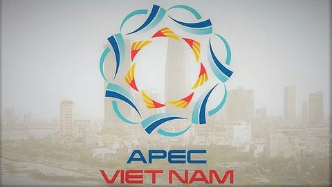 APEC va muc tieu truoc nam 2020 hinh anh