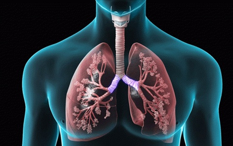 Cách loại bỏ nicotine ra khỏi phổi nhanh chóng