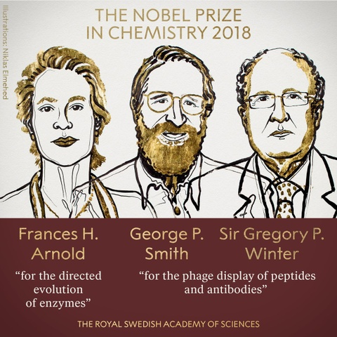 Nobel Hoa hoc 2018 cho nghien cuu 'Darwin trong ong nghiem' hinh anh 1