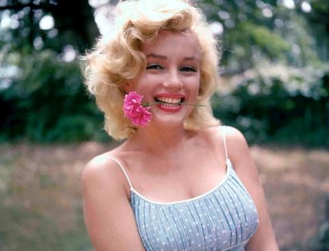 Bi mat chuyen tinh cua tong thong va kieu nu Marilyn Monroe hinh anh