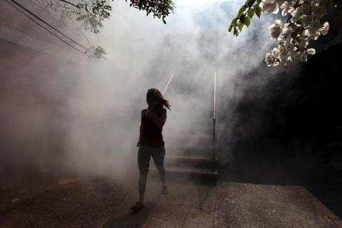 Chau My hoi ha chong virus Zika gay teo nao bao thai hinh anh 10