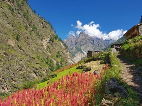 7 ly do vi sao nen trekking Himalaya mot lan trong doi hinh anh 8