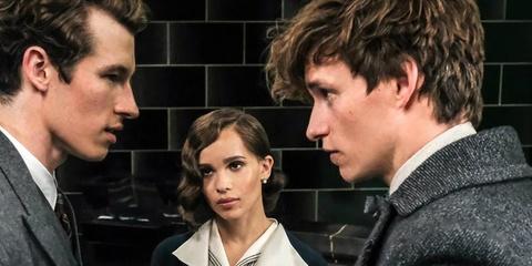 J. K. Rowling co dang tu tay bop chet loat phim 'Fantastic Beasts'? hinh anh 1