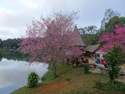 #Mytour: Kham pha Kon Tum - ve dep thien duong bi lang quen hinh anh 8