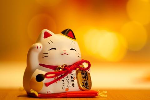 Chiêm ngưỡng nghìn sắc thái mèo may mắn trong bảo tàng ở Mỹ