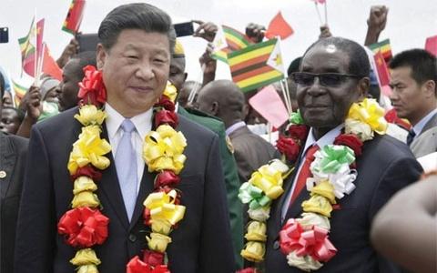 Dan Zimbabwe se di cho bang nhan dan te? hinh anh