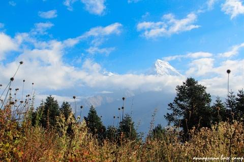 Bi kip tu tuc chinh phuc duong nui Annapurna cho nguoi Viet hinh anh 7