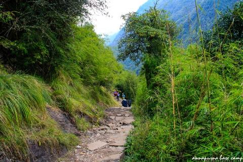 Bi kip tu tuc chinh phuc duong nui Annapurna cho nguoi Viet hinh anh 15