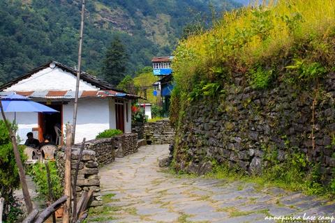 Bi kip tu tuc chinh phuc duong nui Annapurna cho nguoi Viet hinh anh 2