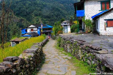 Bi kip tu tuc chinh phuc duong nui Annapurna cho nguoi Viet hinh anh 3