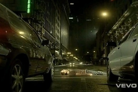 'Chasing Cars' - Snow Patrol hinh anh