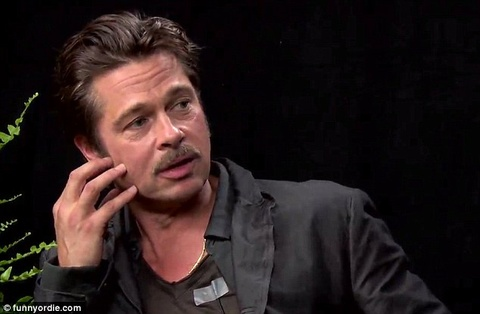Brad Pitt bi FBI dieu tra ve cao buoc bao hanh con hinh anh