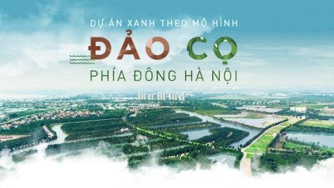 Du an xanh theo mo hinh dao Co phia Dong Ha Noi hinh anh