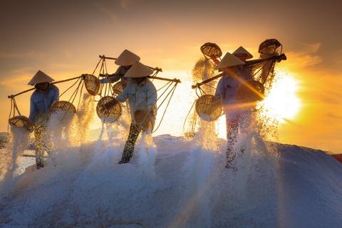 Ninh Thuan - ban hoa tau dac sac cua thien nhien va con nguoi hinh anh 15