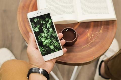 iPhone 7 Plus, 8 Plus va iPhone X hut khach tai Di Dong Viet hinh anh