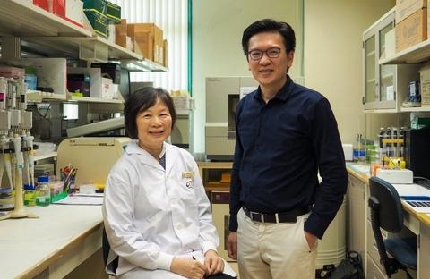 Chẩn đoán nguy cơ ung thư vú bằng nghiên cứu di truyền