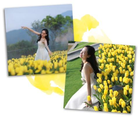 Xu so dieu ky cua trieu doa hoa tulip hinh anh 8