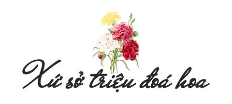 Xu so dieu ky cua trieu doa hoa tulip hinh anh 4