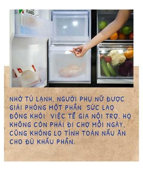 Nhung chiec tu lanh da 'tien hoa' cung cuoc song nguoi Viet the nao? hinh anh 5