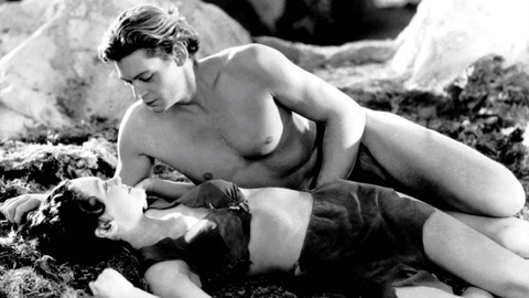 Nhung bo phim noi tieng nhat ve Tarzan hinh anh 3