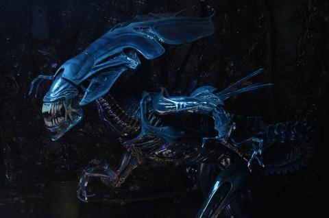Hanh trinh khat mau cua quai vat Xenomorph trong loat 'Alien' hinh anh 4