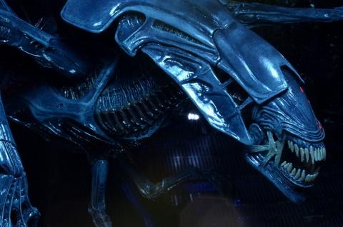 Cac hinh thuc tien hoa ghe ron cua quai vat trong 'Alien' hinh anh 5