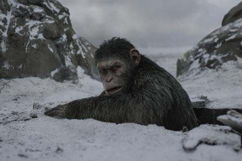 5 bai hoc lon danh cho Hollywood sau mua phim he 2017 hinh anh 11