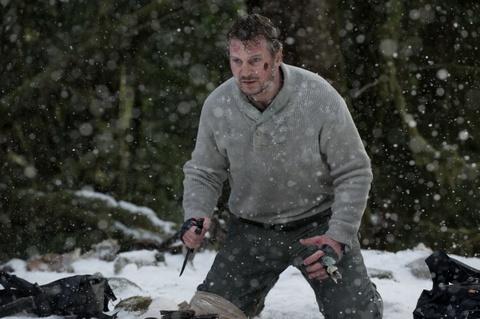 Nhung vai dien hanh dong noi bat cua 'gia gan' Liam Neeson hinh anh 6