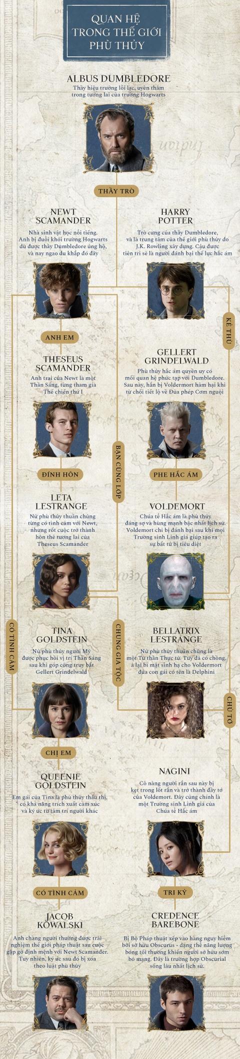 Gioi phu thuy sieu pham trong 'Harry Potter' va 'Fantastic Beasts' hinh anh 1