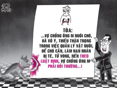 Cho can lam chet nguoi, chu phai den hon 170 trieu hinh anh